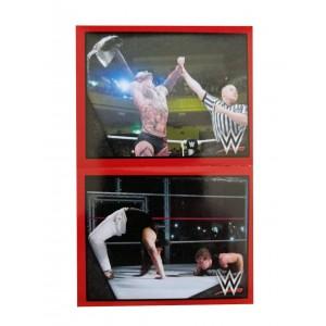 FIGUS SUELTAS WWE 2015