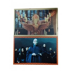 FIGUS SUELTAS HARRY POTTER